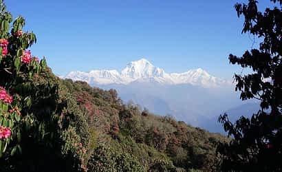Short treks from Pokhara